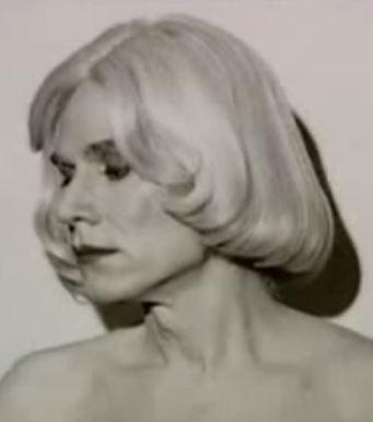 Andy Warhol genderbending-1