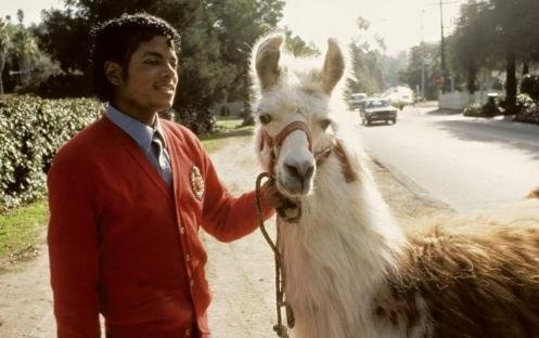 Michael  Jackson s Lama