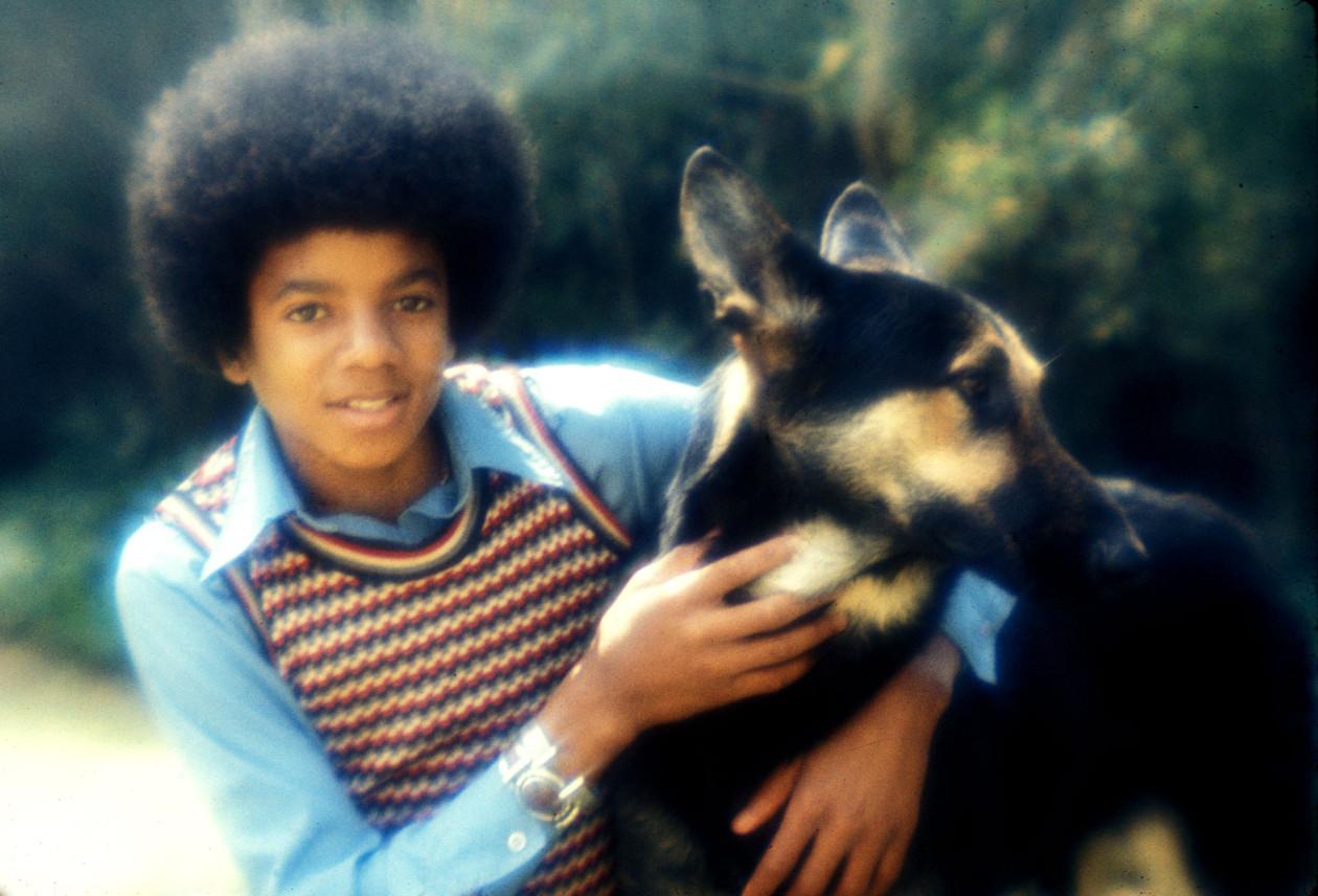 MJ dog